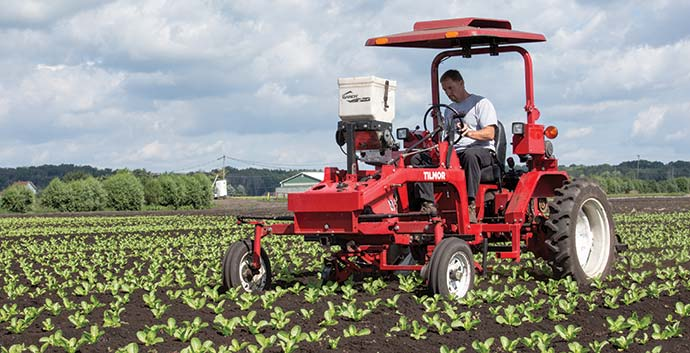 Tilmor Tractor with parallel cultivators