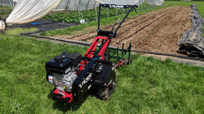 Power OX cultivating lettuce and onions