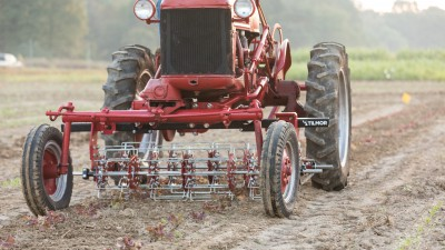 Tilmor Basket Weeder on Farmall Cub