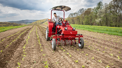 Tilmor Tractor and Basket Weeder